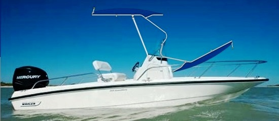 Boston Whaler Dauntless 200, 2011, Montauk-T-Topless™ rendition