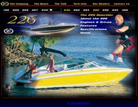 Photo of Cobalt 226, 2002: Original, 2004: Cobalt 226 Web Page Image Factory OEM Wakeboard Tower and Bimini Top in Boot