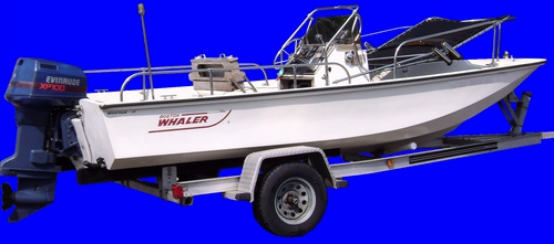 Montauk-Shadow™ Lowered on Boston Whaler® Montauk™ 17 Picture
