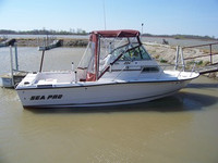 1994 Sea-Pro® 204 Walk Around