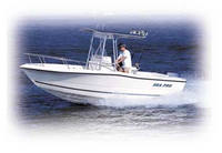 Photo of Sea-Pro® 210CC, 2001: (Factory OEM website photo) main