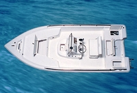 Photo of Sea-Pro® SV1900CC, 2006: (Factory OEM website photo) Top